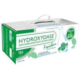 HYDROXYDASE Eau gazeuse minérale menthe Coffret 10Fl 20cl