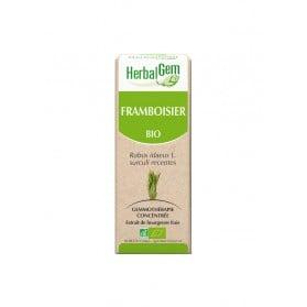 HerbalGem Bio Framboisier 30 ml