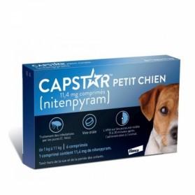 CAPSTAR Petit Chien 11,4 mg 6 comprimés