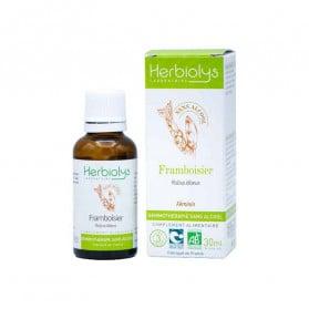 Herbiolys bourgeons Framboisier sans alcool 30ml