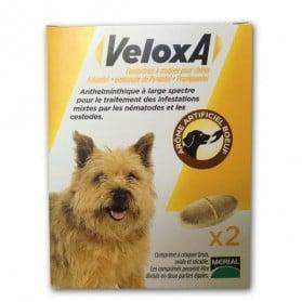 Veloxa comprimés à croquer pour chien boite de 2