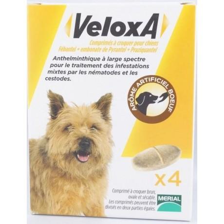 Veloxa comprimés à croquer pour chien boite de 4