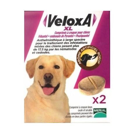 Veloxa XL comprimés à croquer pour chien boite de 2