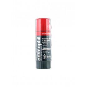 Dermophil Indien Réparation Forte Lèvres 4 g